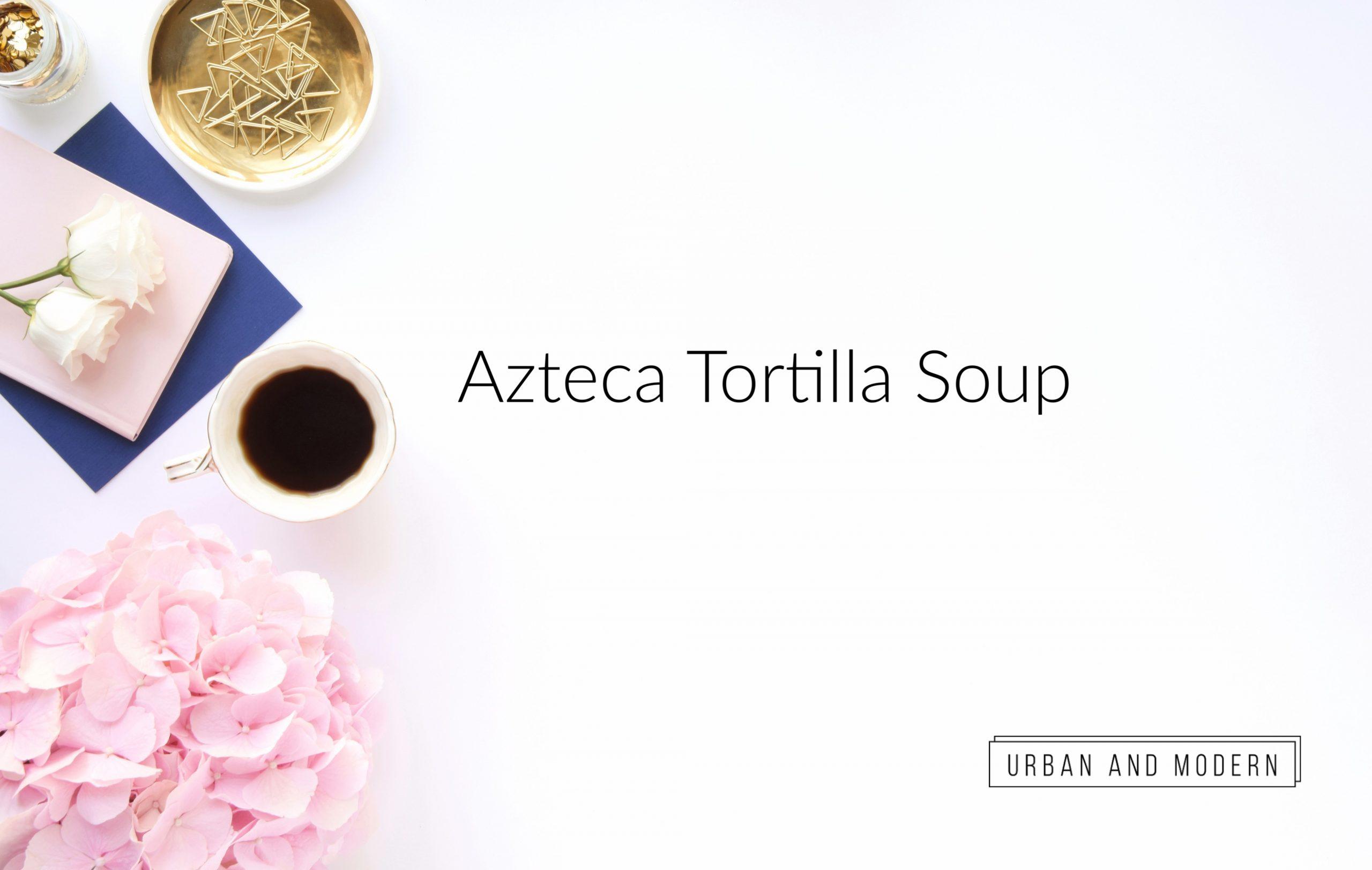 Epicure Aztec Tortilla Soup