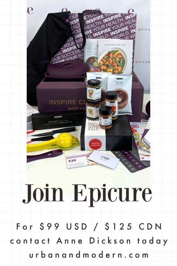Epicure Mini Business Kit 1