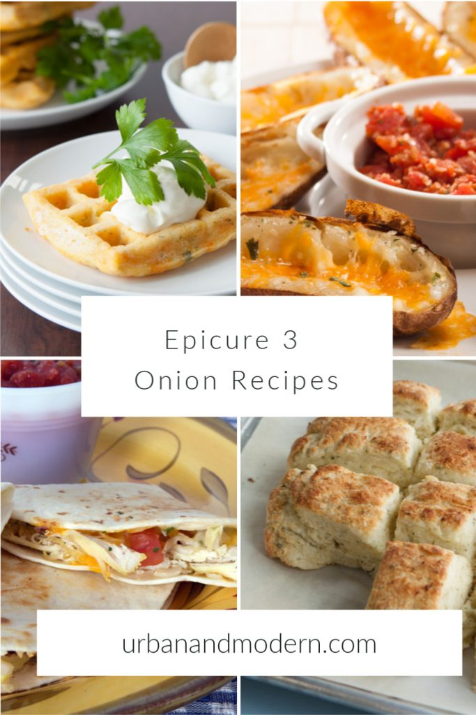 epicure 3 onion recipes