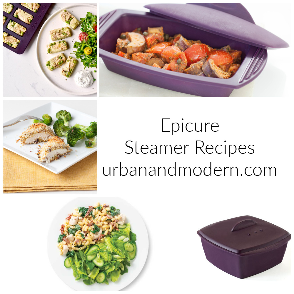 Epicure Steamer Recipes