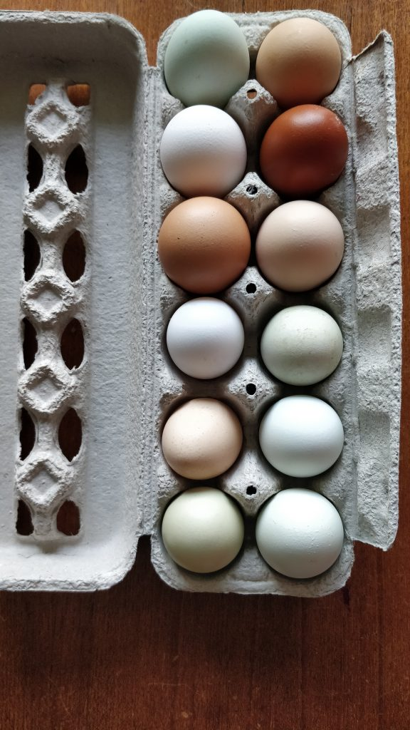 Farmers markets eggs
